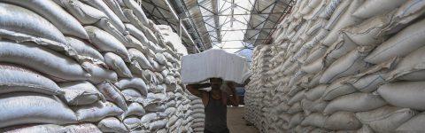 KENYA'S LEADING AGRO-COMMODITY TRADERS